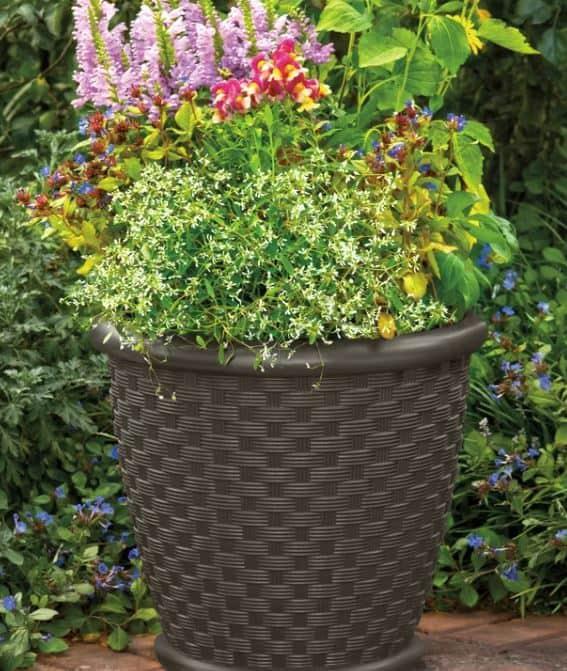 Sonora Resin Pot Planter