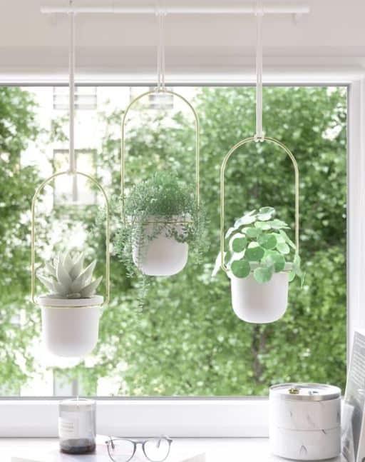 Triflora Hanging Melamine Wall Planter