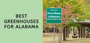 Best Greenhouses for Alabama