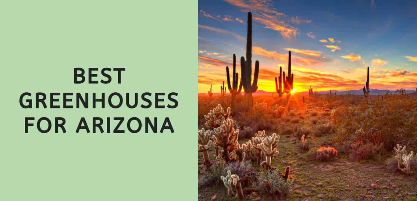Best Greenhouses for Arizona