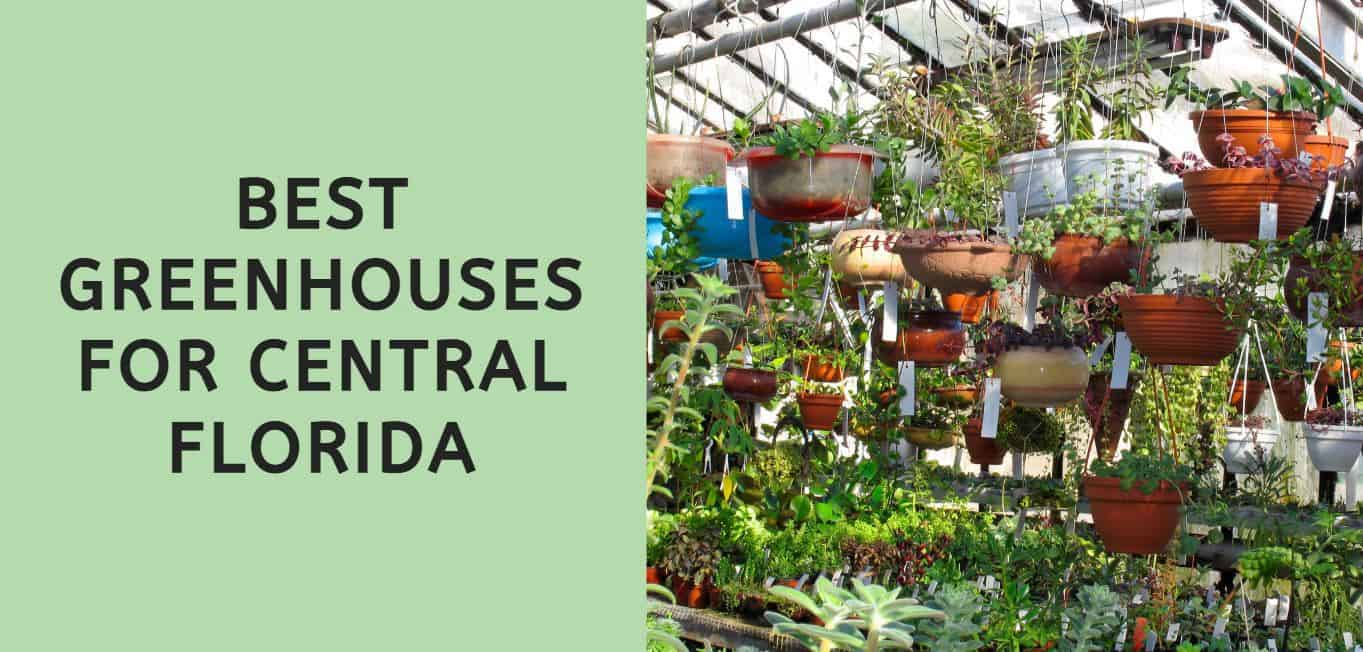 Best Greenhouses for Central Florida