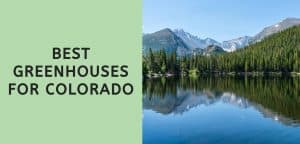 Best Greenhouses for Colorado