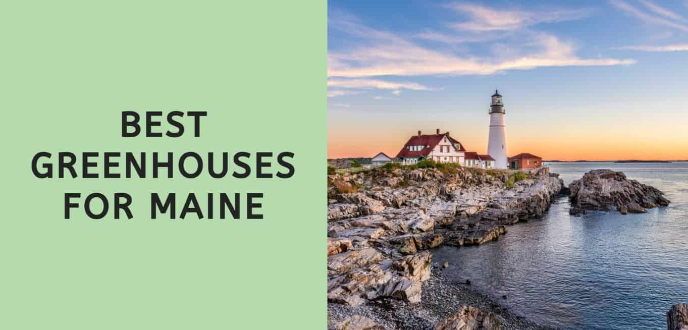Best Greenhouses for Maine