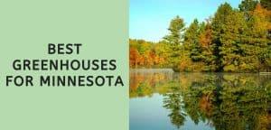 Best Greenhouses for Minnesota