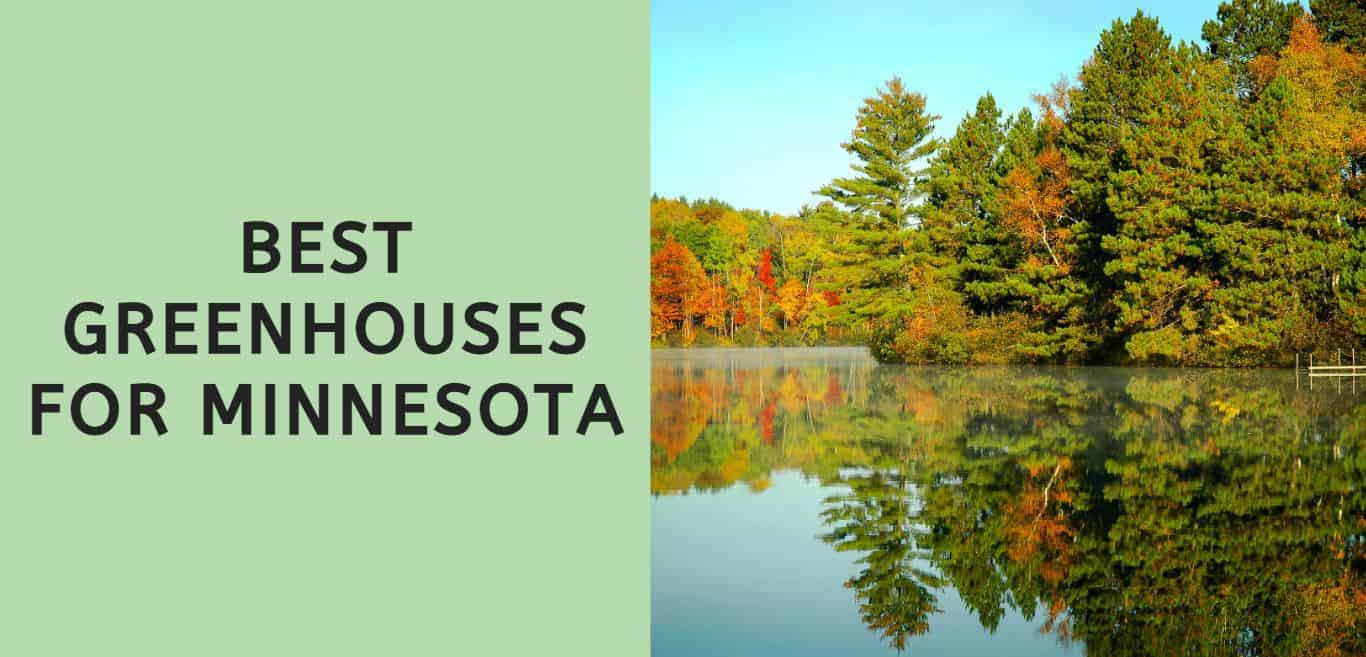 Best Greenhouses for Minnesota