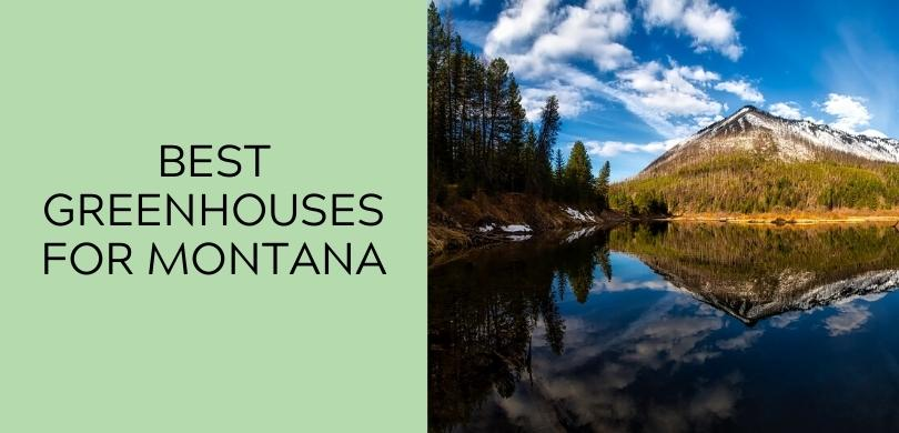 Best Greenhouses for Montana