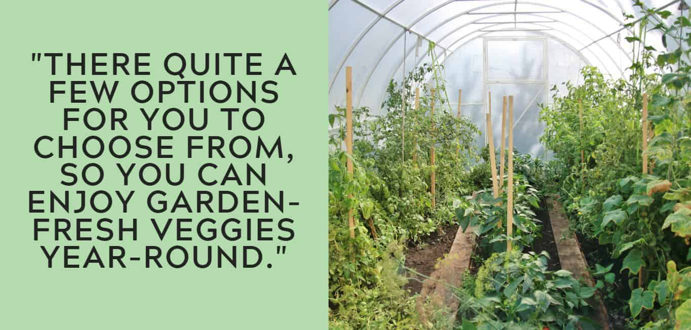 """""""There quite a few options for you to choose from, so you can enjoy garden-fresh veggies year-round."""""""