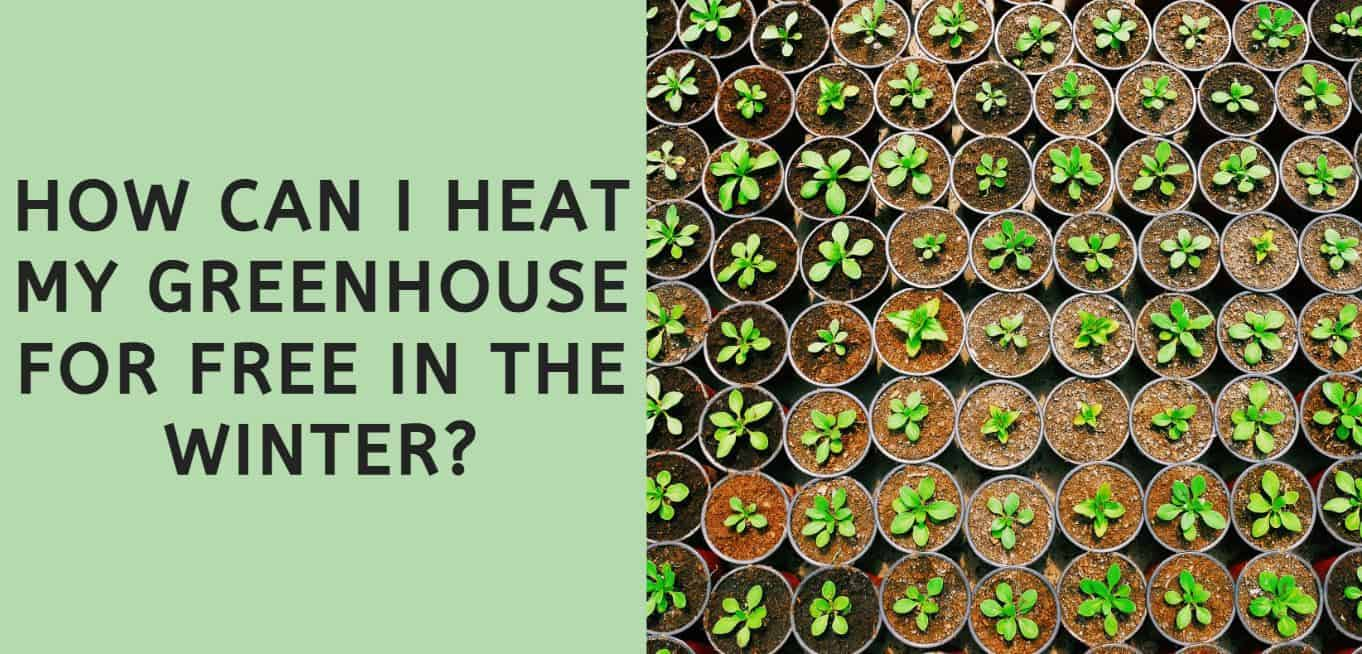How Can I Heat My Greenhouse for Free in the Winter?