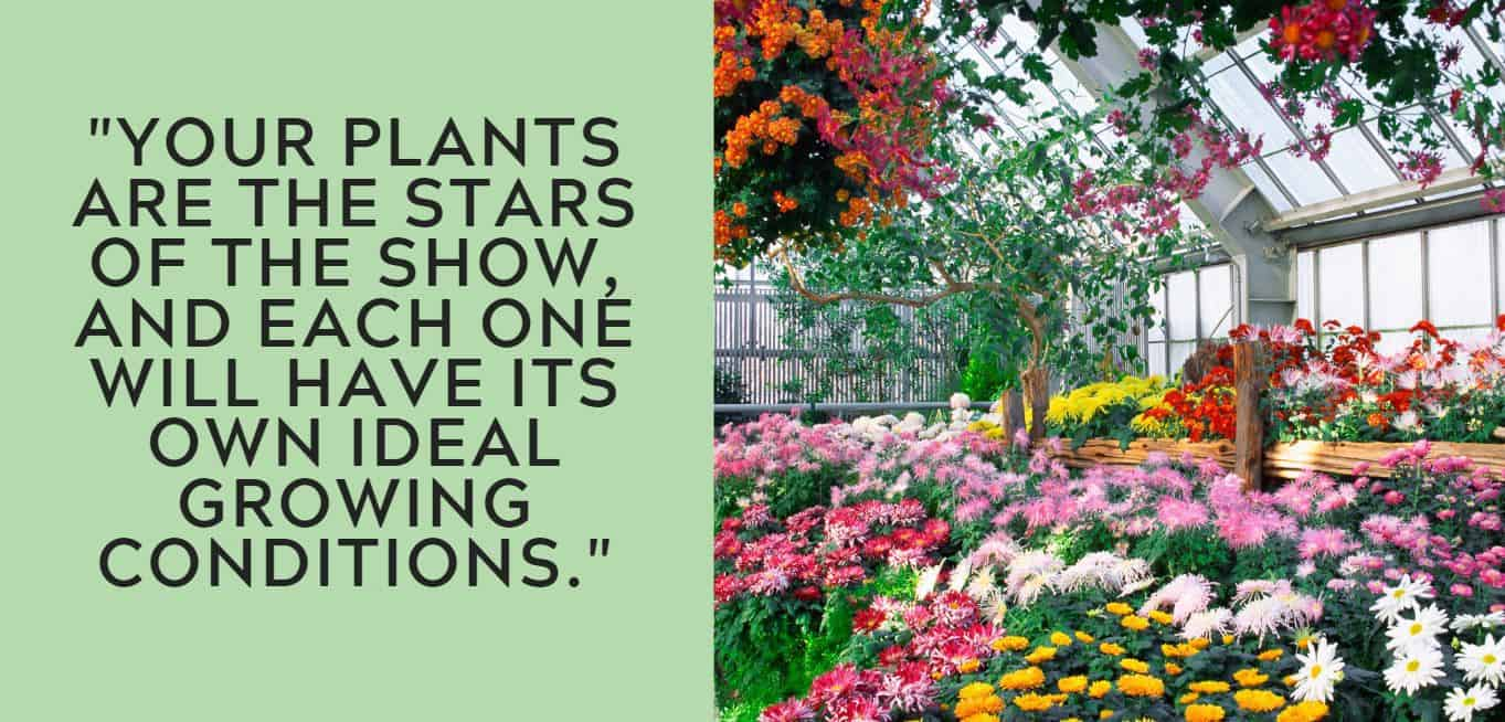 """Your plants are the stars of the show, and each one will have its own ideal growing conditions."""