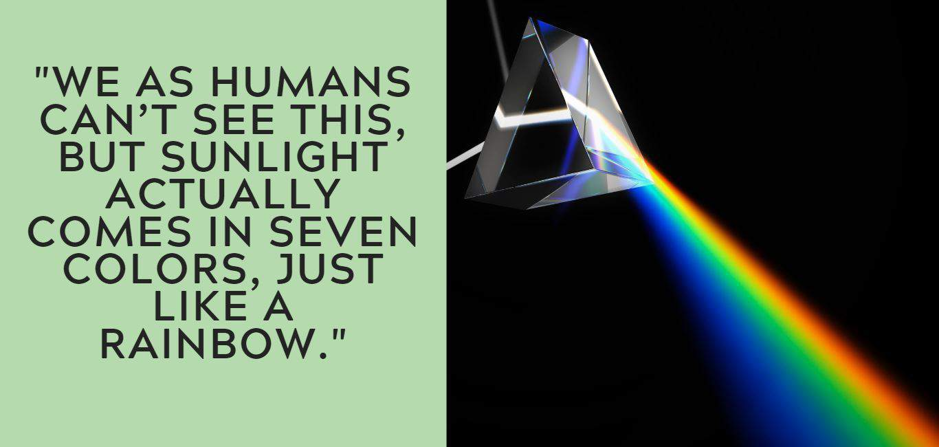 """We as humans can't see this, but sunlight actually comes in seven colors, just like a rainbow."""