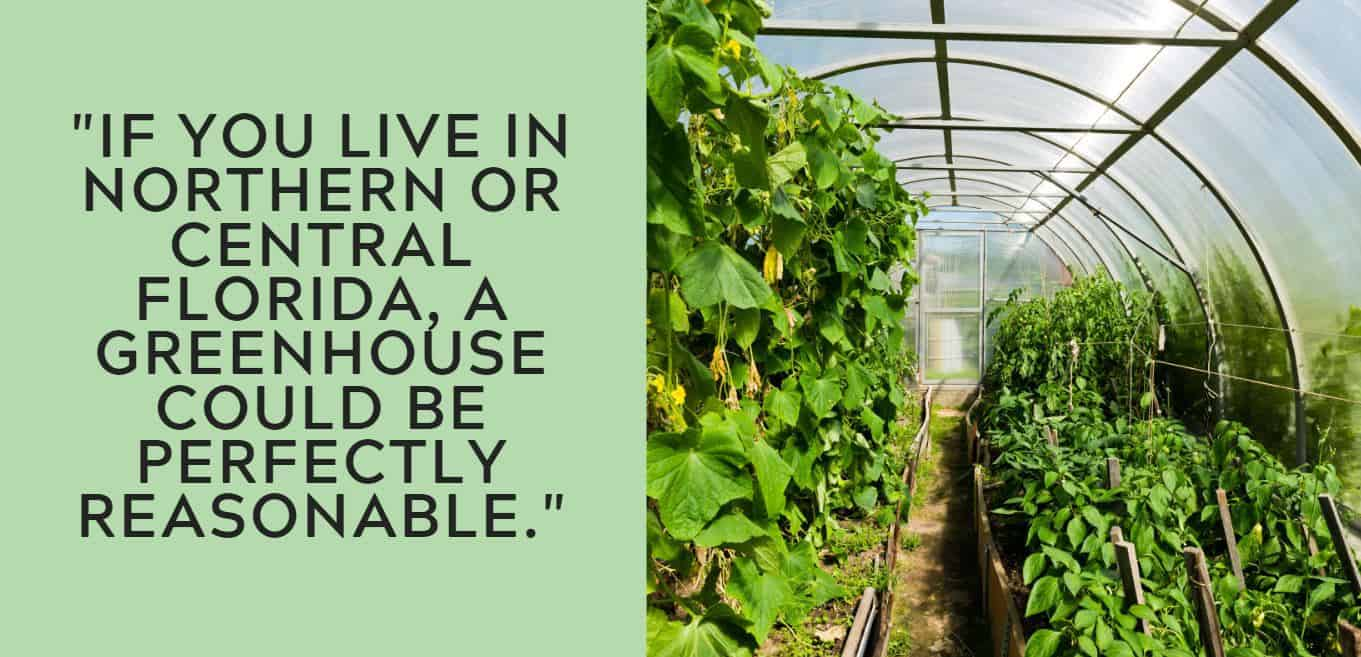 """If you live in northern or central florida, a greenhouse could be perfectly reasonable."""