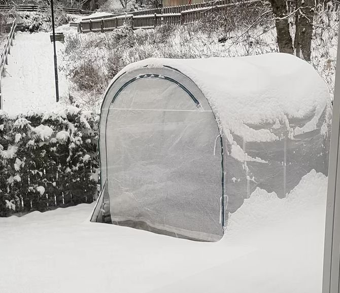 True Shelter Portable Greenhouse