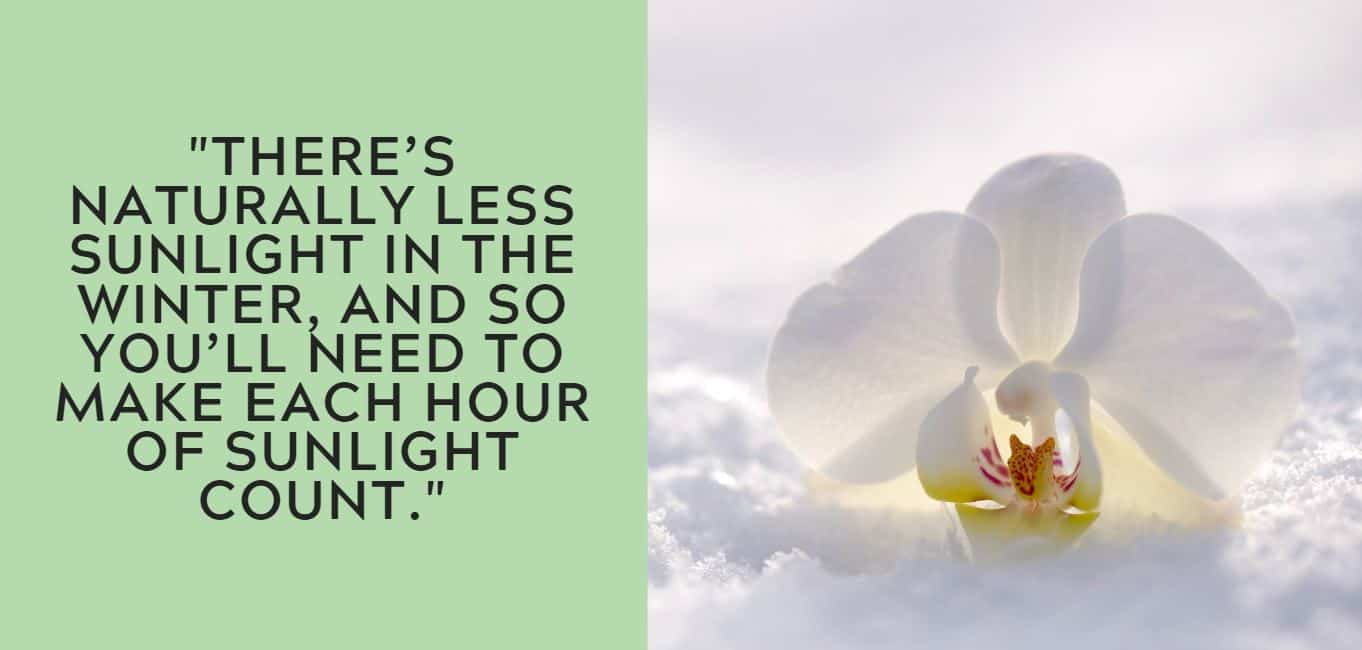"""There's naturally less sunlight in the winter, and so you'll need to make each hour of sunlight count."""