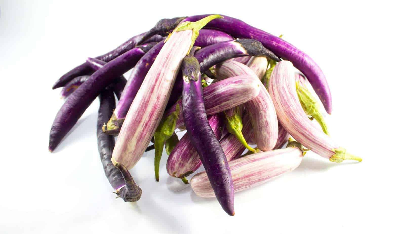 Curled up eggplants