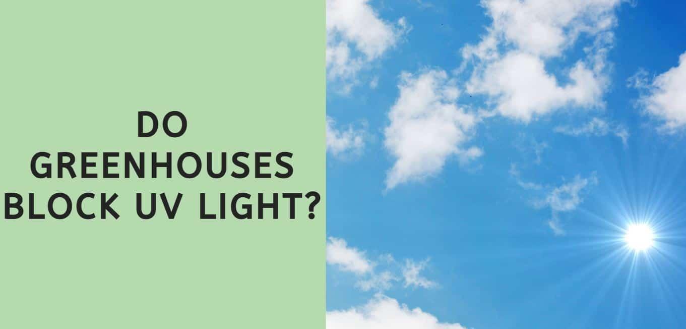 Do Greenhouses Block UV Light?
