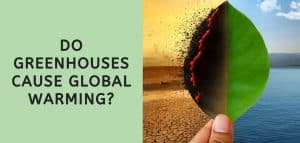 Do Greenhouses Cause Global Warming?
