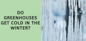 Do Greenhouses Get Cold in the Winter?