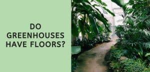 Do Greenhouses Have Floors?