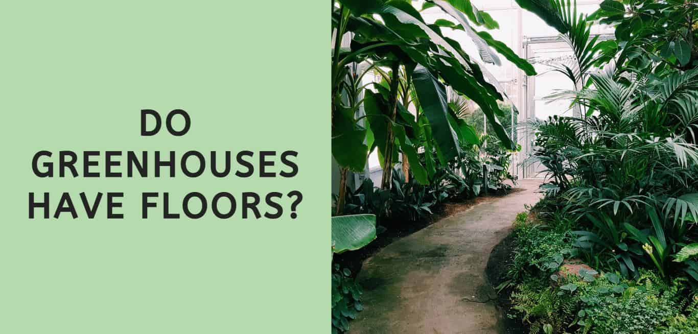 Do Greenhouses Have Floors?