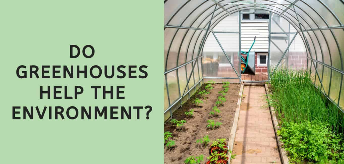 Do Greenhouses Help the Environment?