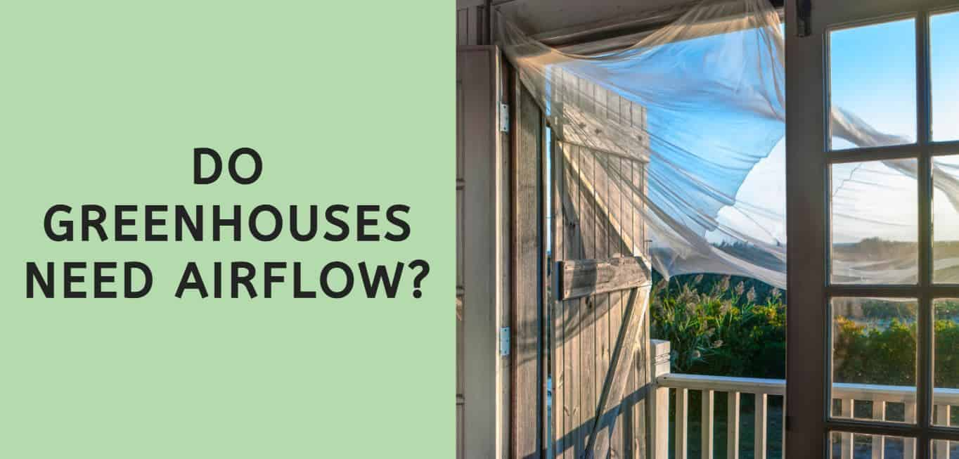 Do Greenhouses Need Airflow?
