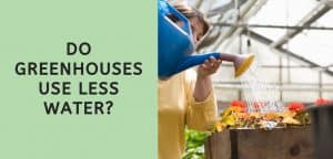 Do Greenhouses Use Less Water?