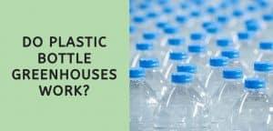 Do Plastic Bottle Greenhouses Work?