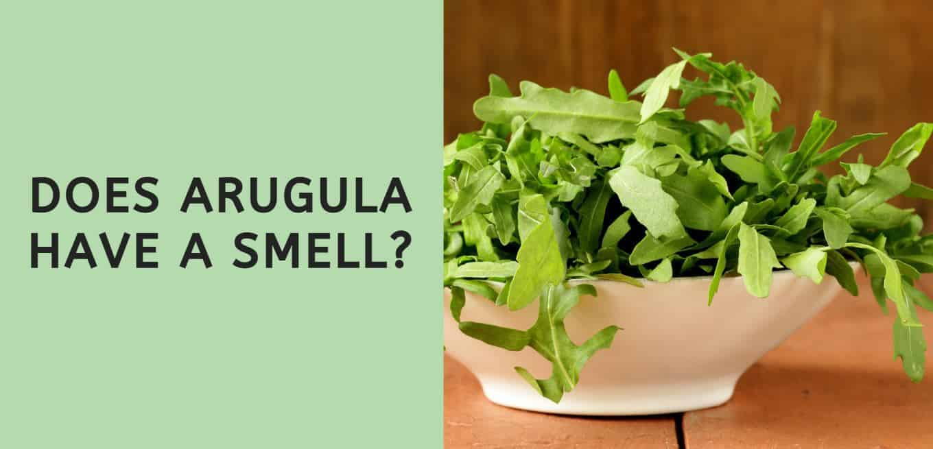 Does Arugula Have a Smell?