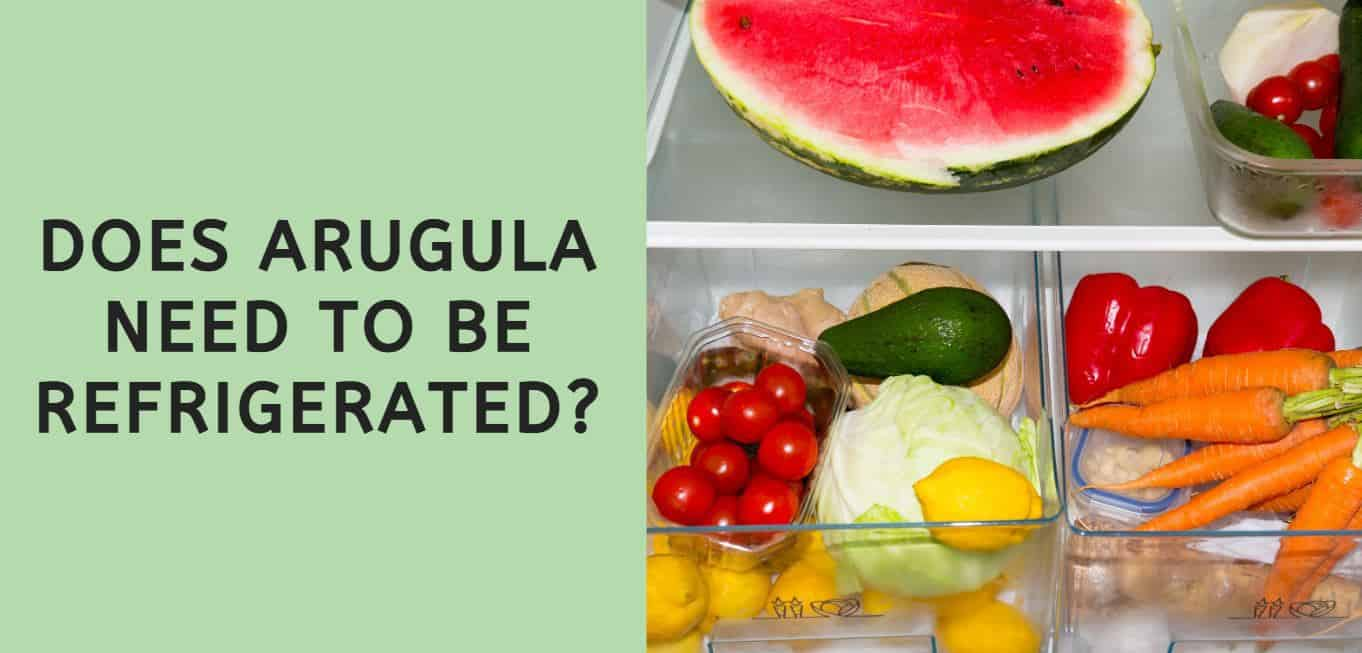 Does Arugula Need to be Refrigerated?