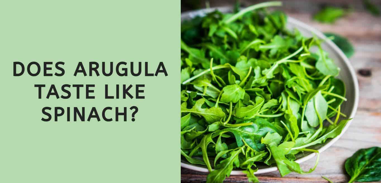 Does Arugula Taste Like Spinach?