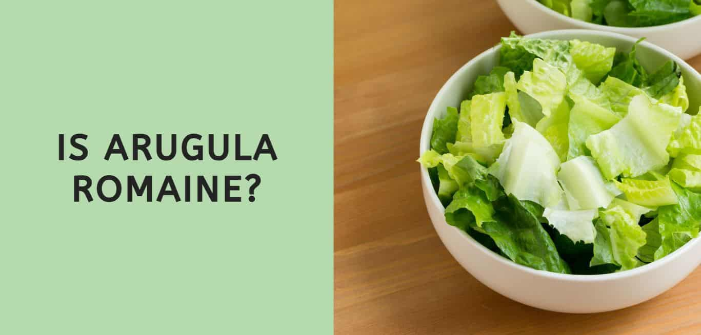 Is Arugula Romaine?