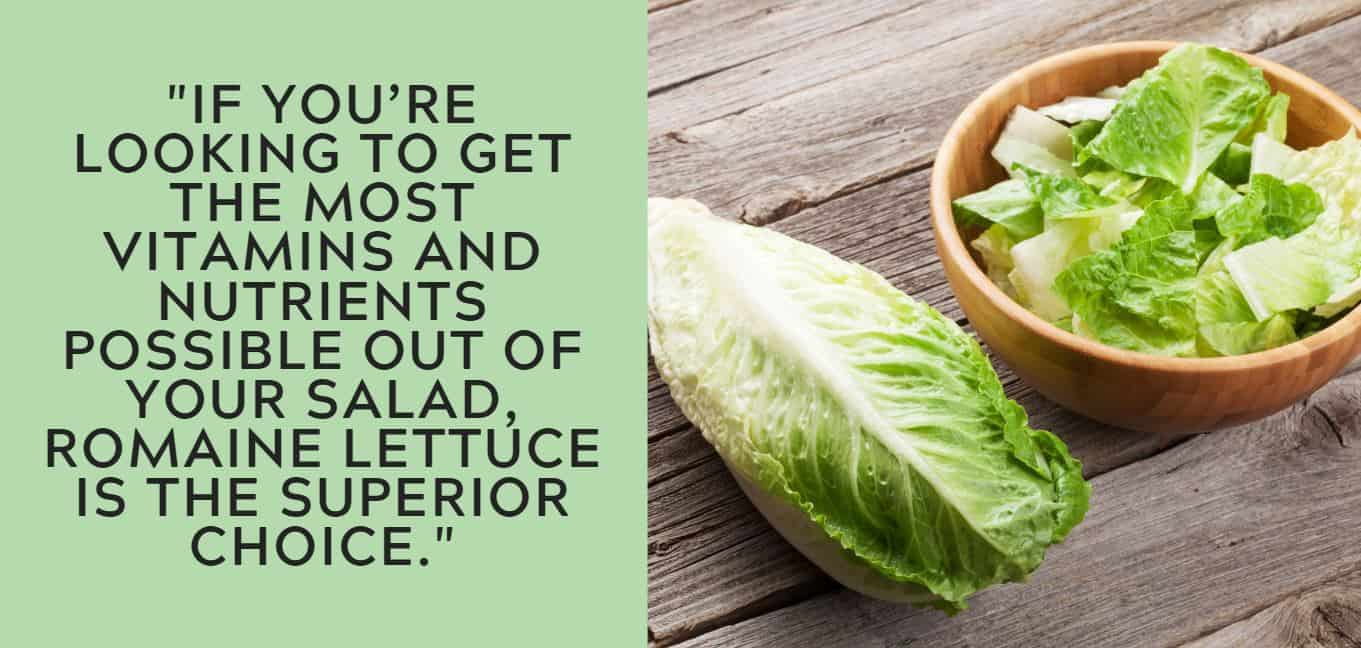 """if you're looking to get the most vitamins and nutrients possible out of your salad, romaine lettuce is the superior choice."""