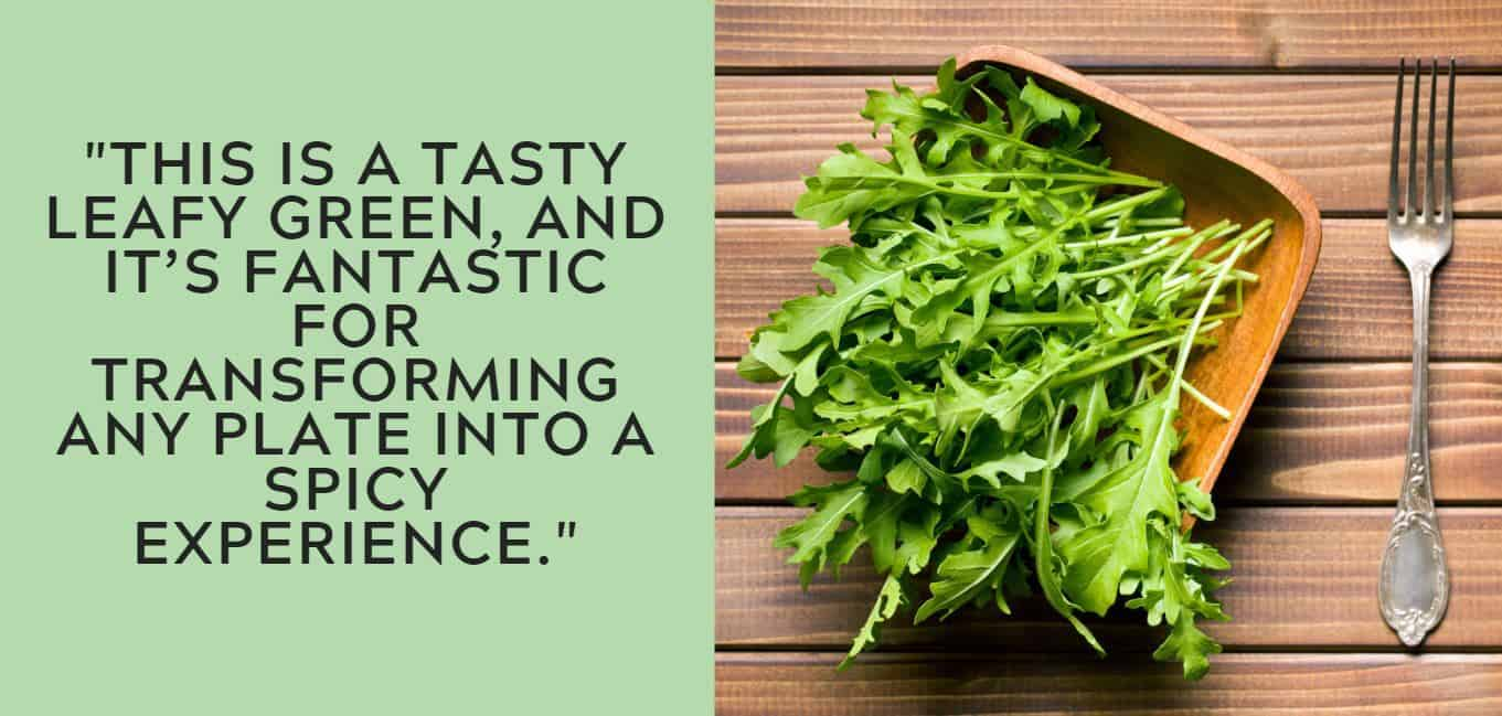 """""""this is a tasty leafy green, and it's fantastic for transforming any plate into a spicy experience."""""""