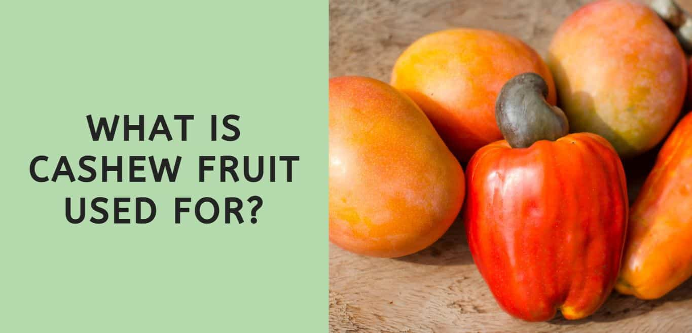 What is Cashew Fruit Used For?