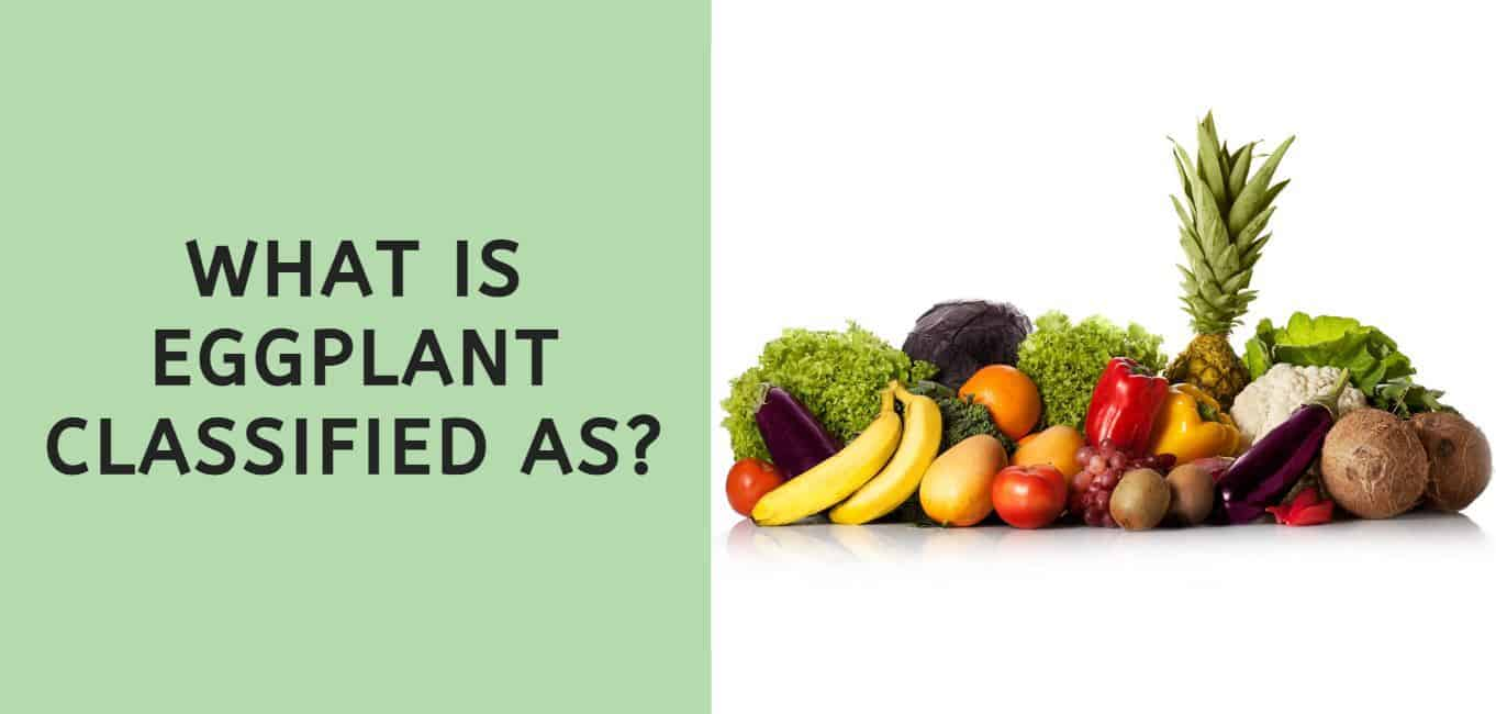 What is Eggplant Classified As?