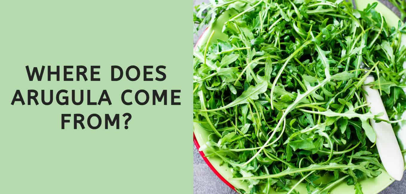 Where Does Arugula Come From?