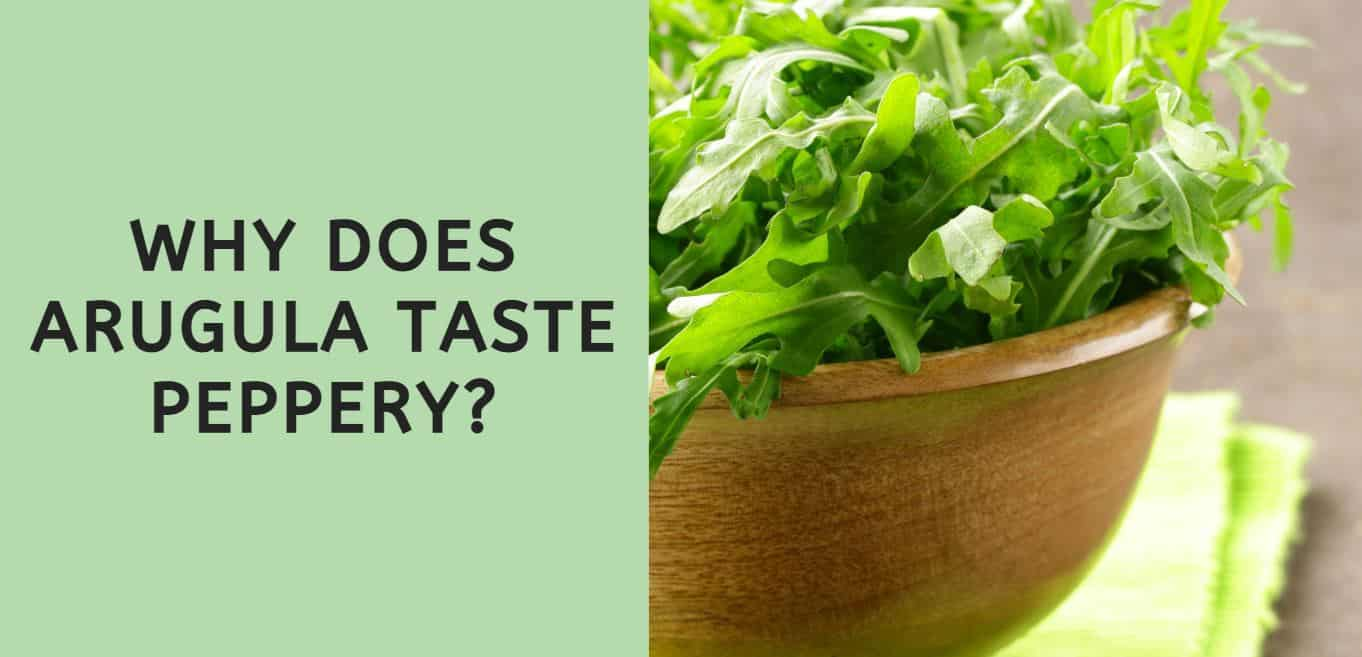 why does arugula taste peppery?