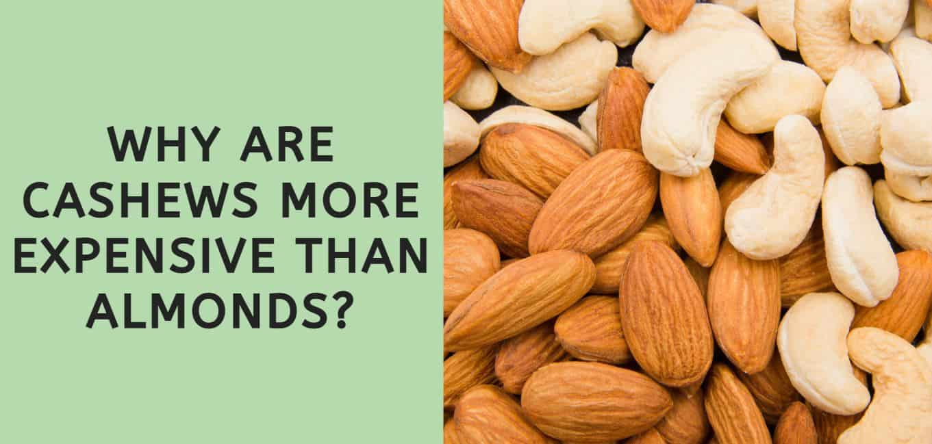 Why are Cashews More Expensive than Almonds?