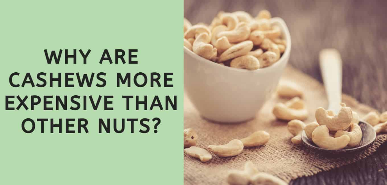 Why are Cashews More Expensive than Other Nuts?