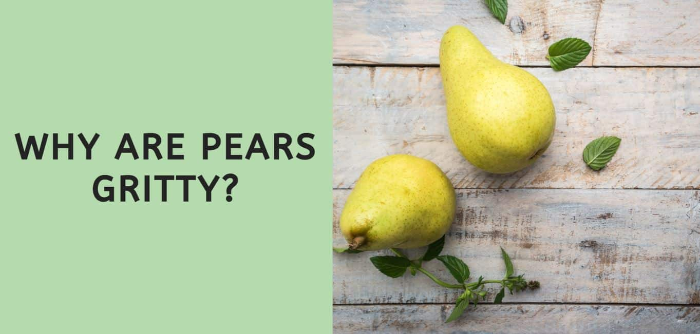 Why are Pears Gritty?