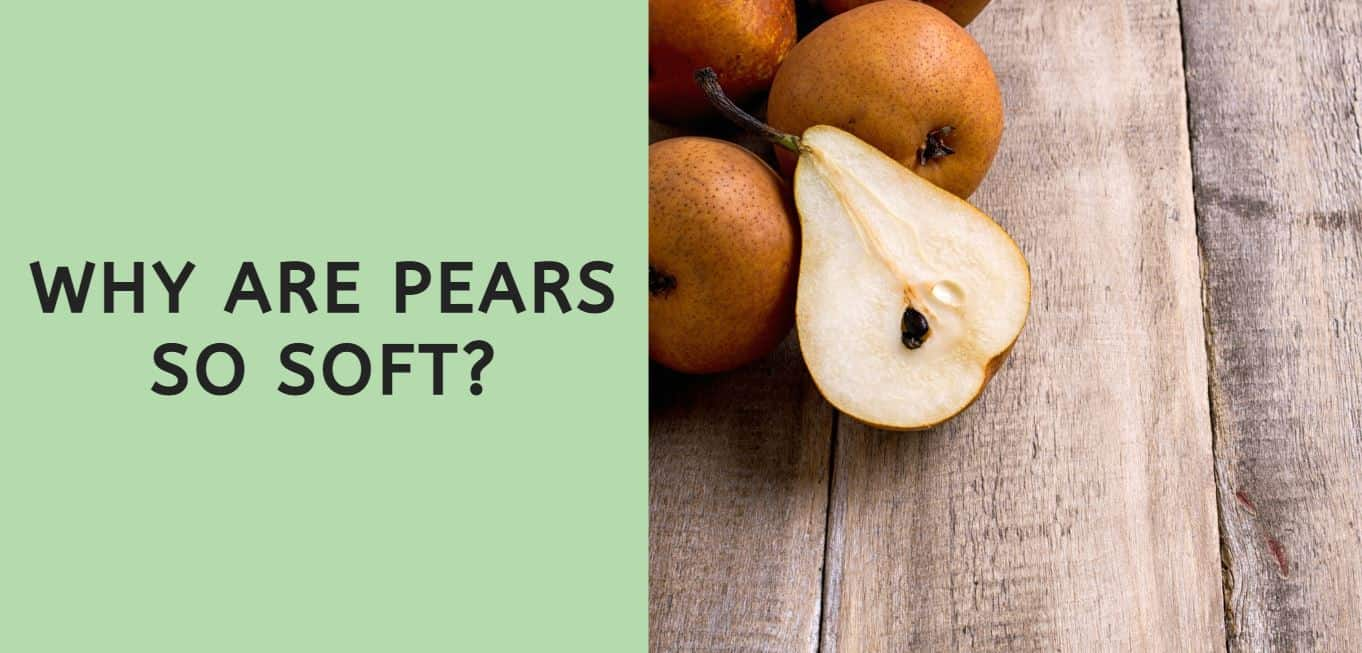 Why are Pears so Soft?