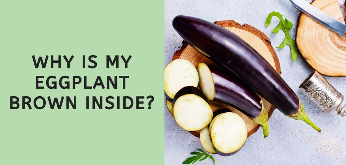 why is my eggplant brown inside?