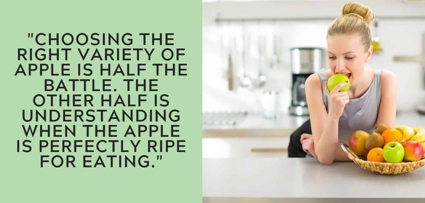 """Choosing the right variety of apple is half the battle. The other half is understanding when the apple is perfectly ripe for eating."""
