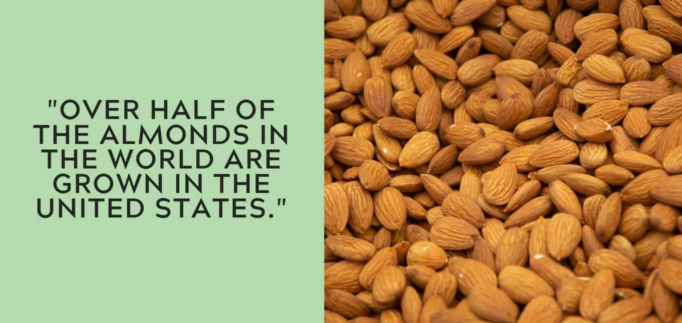 """""""Over half of the almonds in the world are grown in the United States."""""""