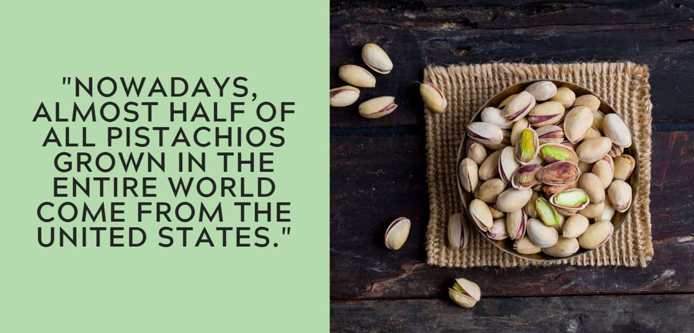 """Nowadays,  almost half of all pistachios grown in the entire world come from the United States."""