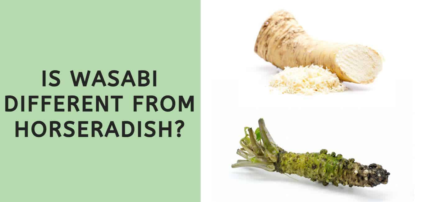 Is Wasabi Different From Horseradish?