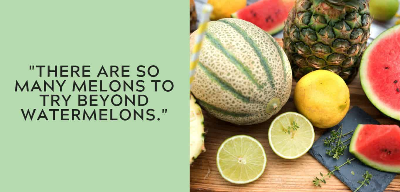 """""""There are so many melons to try beyond watermelons."""""""