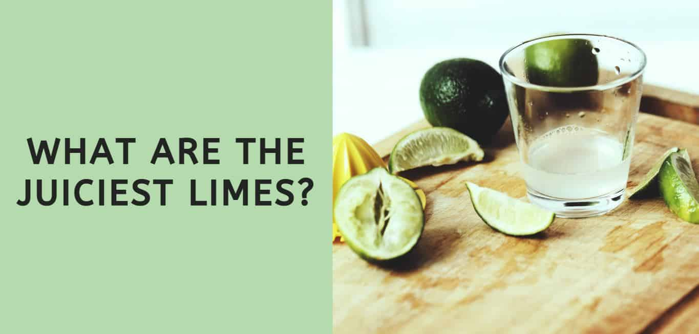 What are the Juiciest Limes?