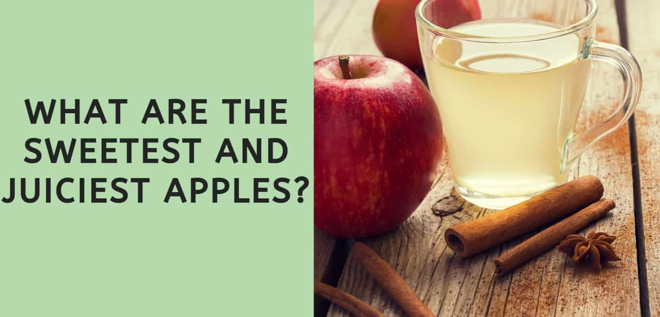 What are the Sweetest and Juiciest Apples?