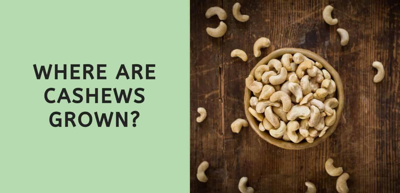 Where are Cashews Grown?